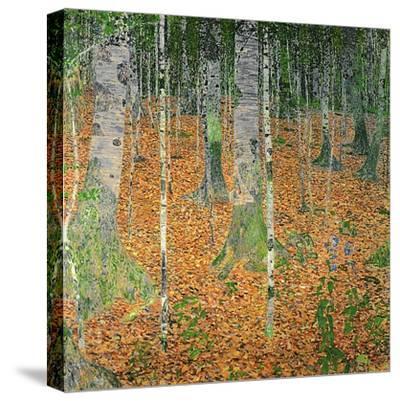 The Birch Wood, 1903-Gustav Klimt-Stretched Canvas Print