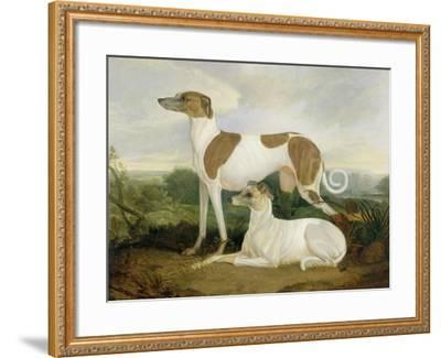 Two Greyhounds in a Landscape-Charles Hancock-Framed Giclee Print