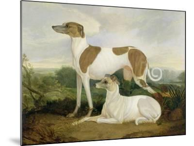 Two Greyhounds in a Landscape-Charles Hancock-Mounted Giclee Print