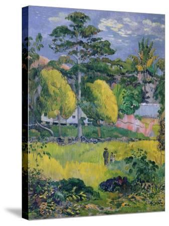 Landscape, 1901-Paul Gauguin-Stretched Canvas Print