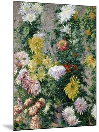 White and Yellow Chrysanthemums, 1893-Gustave Caillebotte-Mounted Giclee Print