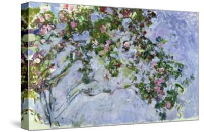 The Roses, 1925-26-Claude Monet-Stretched Canvas Print