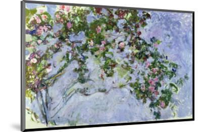 The Roses, 1925-26-Claude Monet-Mounted Premium Giclee Print