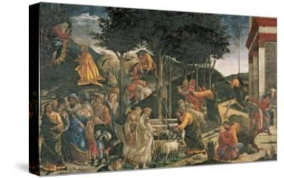 The Youth of Moses, in the Sistine Chapel, 1481 (Fresco) (For Detail See 315896)-Sandro Botticelli-Stretched Canvas Print