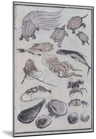 Undersea Creatures, from a Manga (Colour Woodblock Print)-Katsushika Hokusai-Mounted Giclee Print