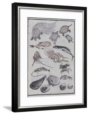 Undersea Creatures, from a Manga (Colour Woodblock Print)-Katsushika Hokusai-Framed Giclee Print