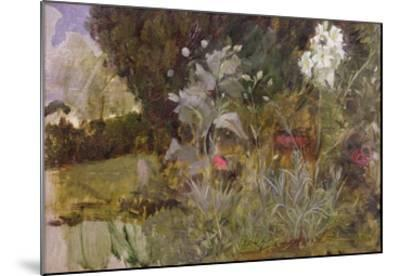Study of Flowers and Foliage, for 'The Enchanted Garden'-John William Waterhouse-Mounted Giclee Print