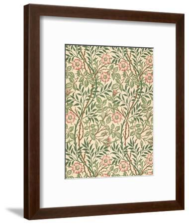 sweet Briar' Design for Wallpaper, Printed by John Henry Dearle (1860-1932) 1917-William Morris-Framed Premium Giclee Print