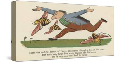 There Was an Old Person of Dover, Who Rushed Through a Field of Blue Clover-Edward Lear-Stretched Canvas Print