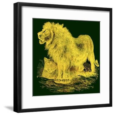 The Lion, Illustration from J. G. Wood's 'Illustrated Natural History', Published C.1850-English-Framed Giclee Print