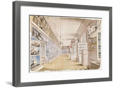The Long Room, Interior of Front Room in Peale's Museum, 1822 (W/C over Graphite on Paper)-Charles Willson Peale-Framed Giclee Print