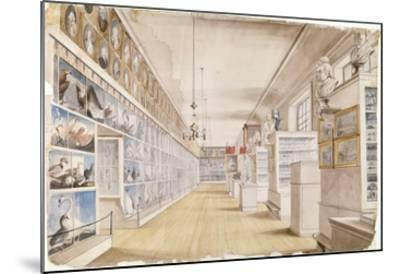 The Long Room, Interior of Front Room in Peale's Museum, 1822 (W/C over Graphite on Paper)-Charles Willson Peale-Mounted Giclee Print