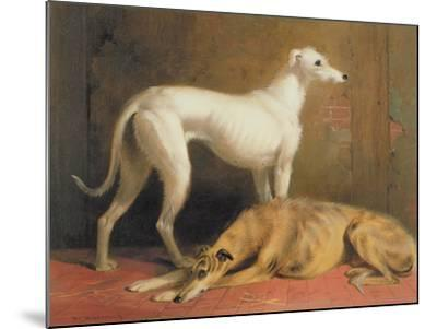 Deerhounds in an Interior-William Barraud-Mounted Giclee Print
