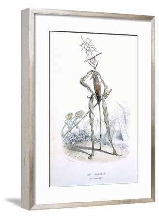 A Country Stroller, from 'L'Empire Des Legumes, Memoires De Curcurbitus'-Amedee Varin-Framed Giclee Print