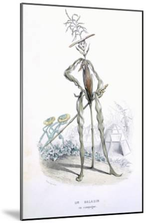 A Country Stroller, from 'L'Empire Des Legumes, Memoires De Curcurbitus'-Amedee Varin-Mounted Giclee Print