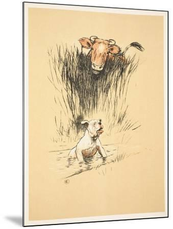 Bull and Dog in Field (Colour Litho)-Cecil Aldin-Mounted Giclee Print