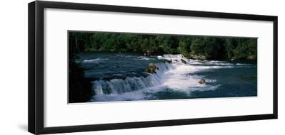 Bears Fish Brooks Fall Katmai AK--Framed Photographic Print