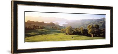 Akaroa Harbor Canterbury New Zealand--Framed Photographic Print