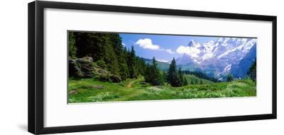 Alpine Scene Near Murren Switzerland--Framed Photographic Print