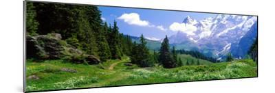 Alpine Scene Near Murren Switzerland--Mounted Photographic Print