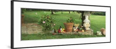 Wine Grapes and Foods of Chianti Region of Tuscany at Private Estate, Italy--Framed Photographic Print