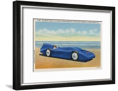 The Bluebird 5-R.H. Le Sesne-Framed Art Print
