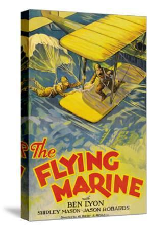 The Flying Marine--Stretched Canvas Print