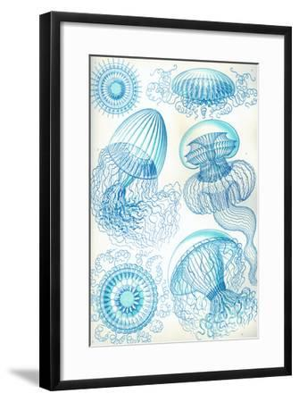 Jelly Fish-Ernst Haeckel-Framed Art Print