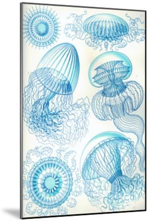 Jelly Fish-Ernst Haeckel-Mounted Art Print