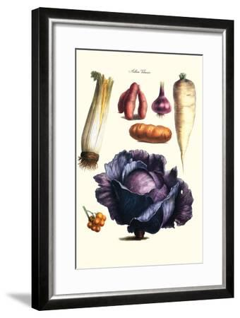 Vegetables; Cabbage, Celery, Yam, Potato, Onion, Tomato, Horse Raddish-Philippe-Victoire Leveque de Vilmorin-Framed Art Print