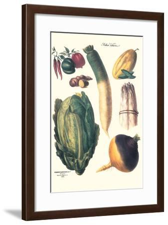 Vegetables; White Asparagus, Spago, Peppers, Cabbage, Turnip-Philippe-Victoire Leveque de Vilmorin-Framed Art Print