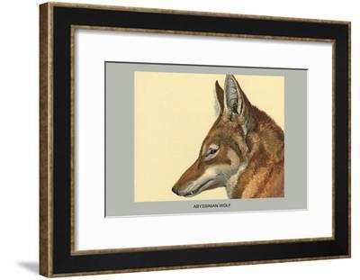 Abyssinian Wolf-Louis Agassiz Fuertes-Framed Art Print