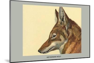 Abyssinian Wolf-Louis Agassiz Fuertes-Mounted Art Print