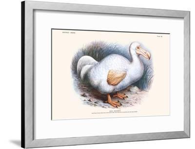Didus Solitarius Dodo-Lionel Walter Rothschild-Framed Art Print