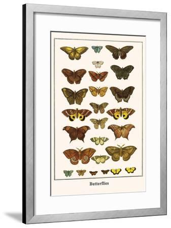 Butterflies-Albertus Seba-Framed Art Print