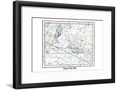 Pisces the Fish-Alexander Jamieson-Framed Art Print