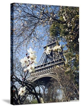 Eiffel Tower-Michel Lipchitz-Stretched Canvas Print