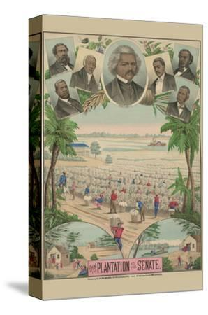 From the Plantation to the Senate--Stretched Canvas Print