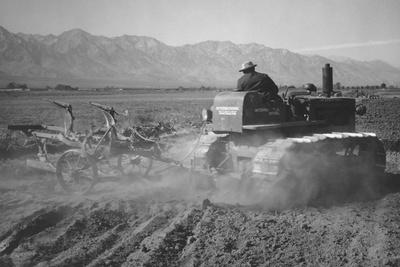 Benji Iguchi Driving Tractor in Field-Ansel Adams-Stretched Canvas Print