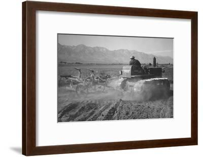 Benji Iguchi Driving Tractor in Field-Ansel Adams-Framed Art Print