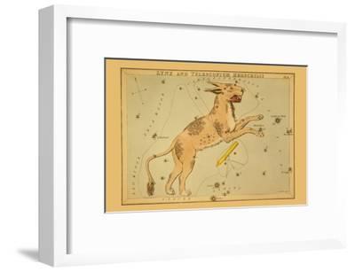 Lynx and Telescopium Herschilii-Aspin Jehosaphat-Framed Art Print