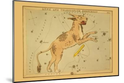 Lynx and Telescopium Herschilii-Aspin Jehosaphat-Mounted Art Print