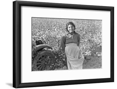 Cotton Picker-Dorothea Lange-Framed Art Print