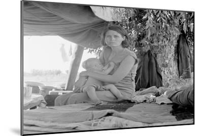 Refugees of the Drought of the Dust Bowl-Dorothea Lange-Mounted Art Print