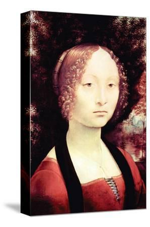 Portrait of a Dame-Leonardo da Vinci-Stretched Canvas Print