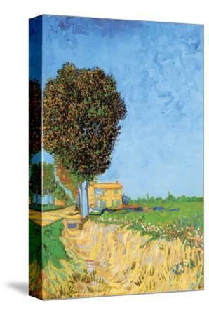A Lane Near Arles-Vincent van Gogh-Stretched Canvas Print