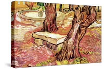 The Stone Bench in the Garden of Saint-Paul Hospital-Vincent van Gogh-Stretched Canvas Print