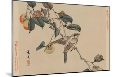 Bird Perched on a Branch from a Fruit Persimmon Tree.-Keibun Matsumura-Mounted Art Print
