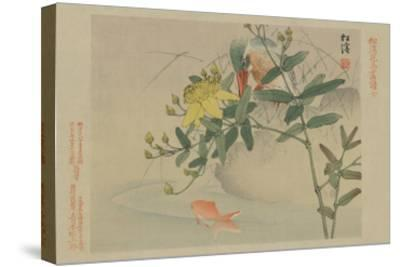 Kingfisher and Goldfish in Pond--Stretched Canvas Print