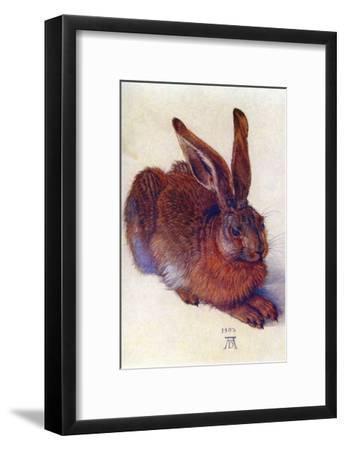 Field Hare-Albrecht D?rer-Framed Art Print